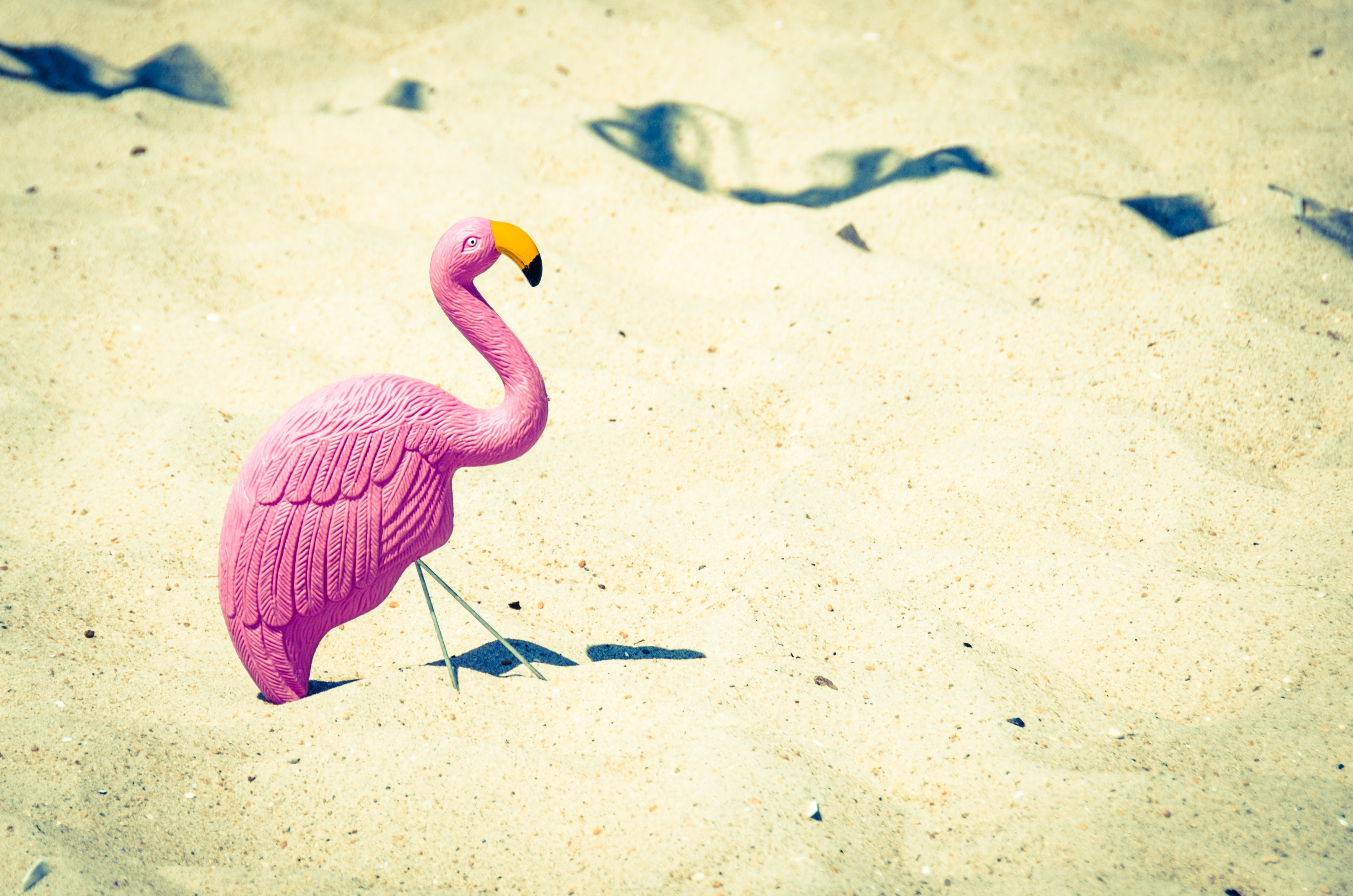 A lone flamingo ornament in the sand.